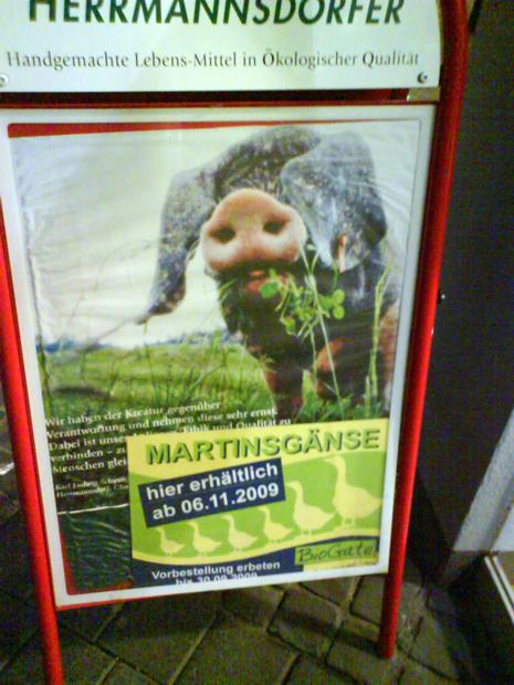 Martinsgans Martinsschwein Schwein Trier