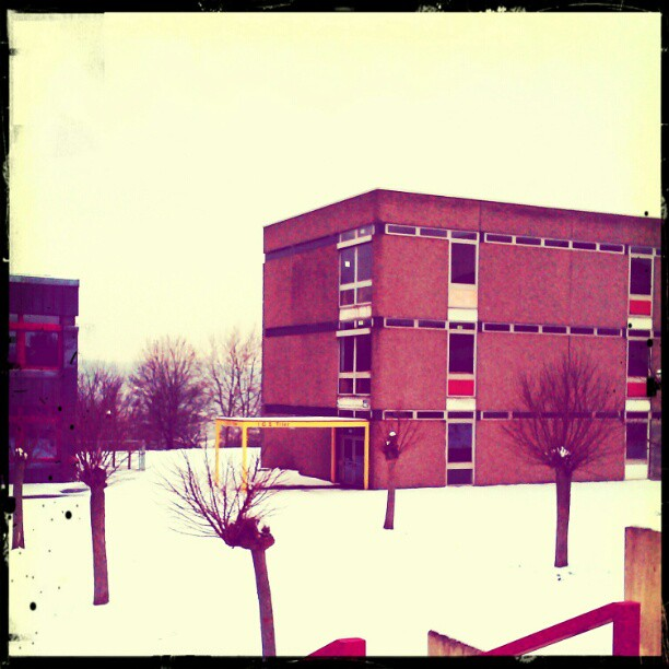 Photo: #Winter #Trier  #Integrierte #Gesamtschule
