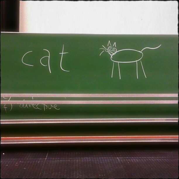 Photo: #Cat content in this semester's last #101 #lecture. #semiotics #saussure #lit101tr