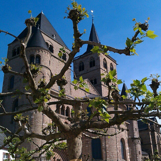 Photo: #Trier #cathedral #spring