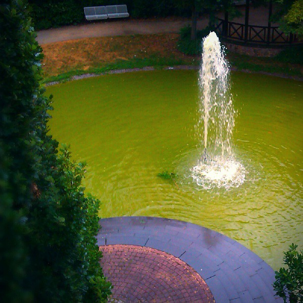 Photo: #Fountain in #Idar-Oberstein. #green #water #algae