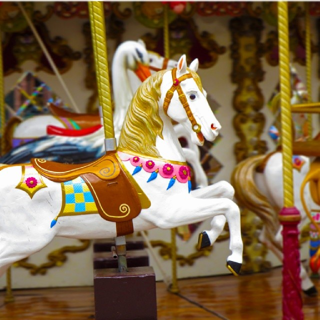 Photo: #Merry-go-round #horse. #Strasbourg #carousel #childhood #France #vintage