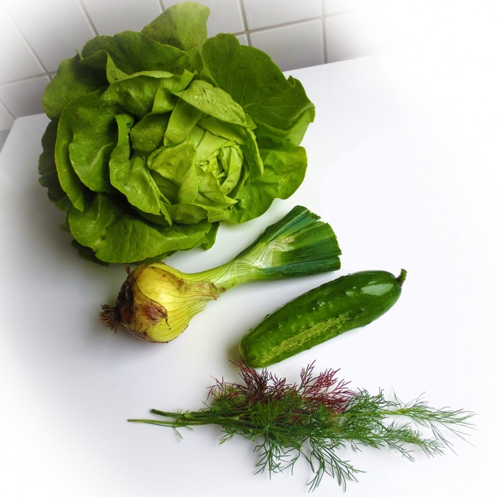 IMG_6532 Tagesernte Kopfsalat Zwiebel Gurke und Dill
