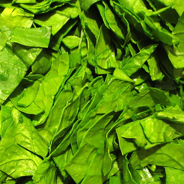 Photo: #spinach #green #harvest