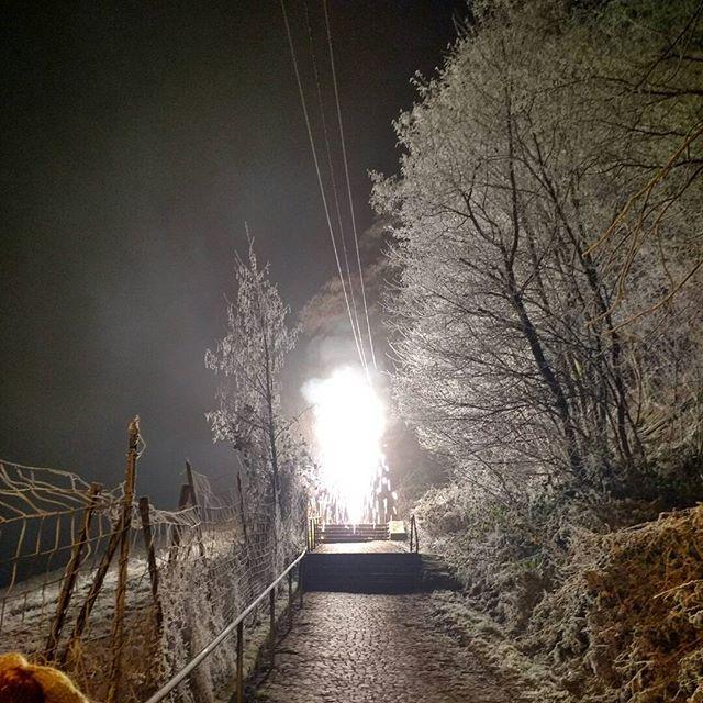 Photo: #Silvester auf dem Kreuzweg in #Trier. #nofilter#feuerwerk#ice#Trees