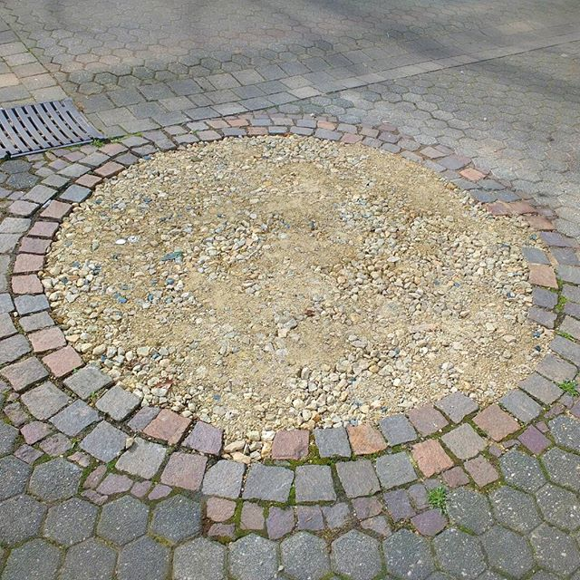 Photo: Splendid idea: remove the bloody #tree and replace with beautiful sand, #stones and gravel!!1! It's also great for parking. #Trier #Heiligkreuz