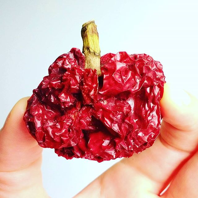 Photo: Any ideas on how to use the #pepper pods I left too long so they dried up--except decoration? #peppers#dry#hard#allotment#homegrown#red#veggie