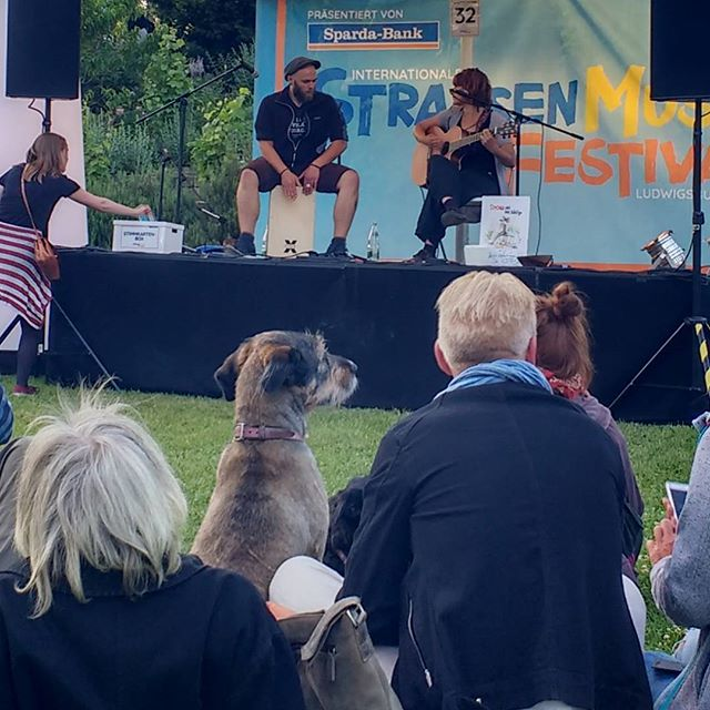 Photo: #Strassenmusikfestival in #Ludwigsburg is for everybody. #dog