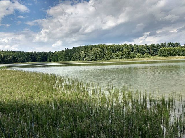 Photo: Our (!) #lake in #Mecklenburg. #vacation #Lähnwitz #latergram #nature
