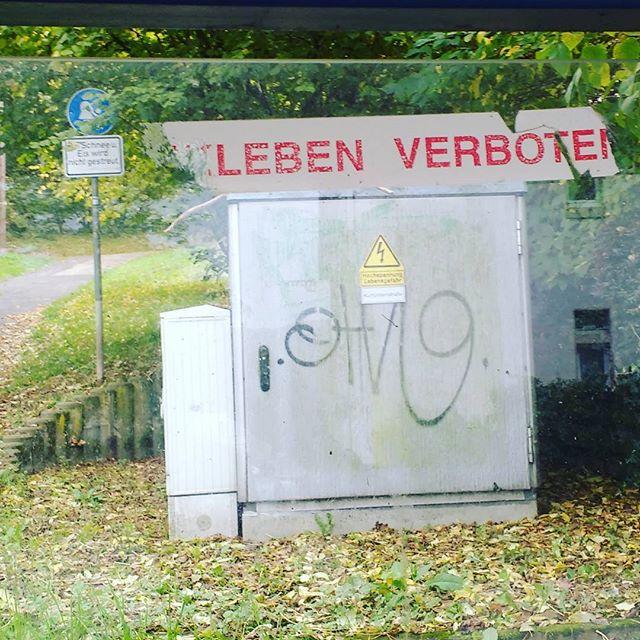 Photo: Lebensfeindlich. #Trier#Gefahr#Haltestelle#Schilder#Ist#ÖPNV