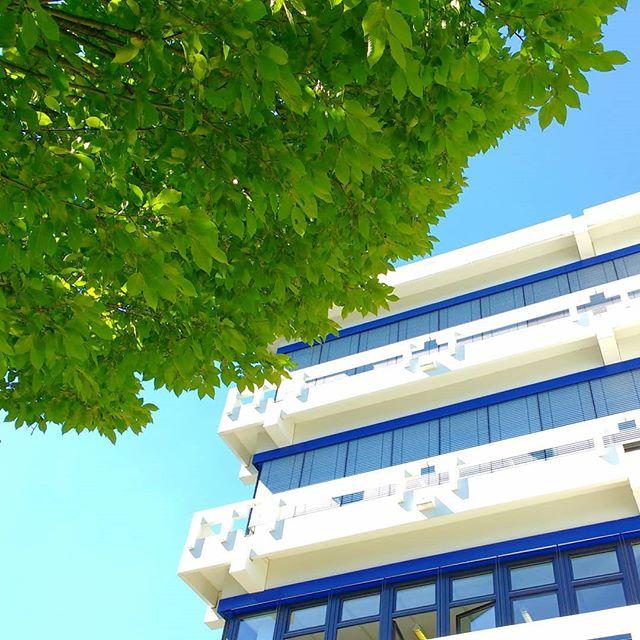 Photo: #Summer @ #phludwigsburg. #sunshine #tree  #architecture #brutalism #leaves #concrete