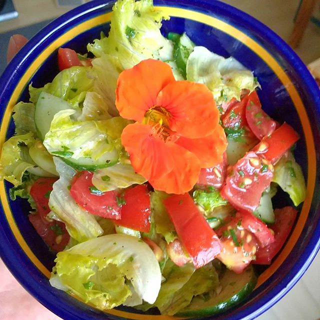 Photo: Gartensalat. #green #greenthumb #selfmade #urbangardening #garden #food #salad #tomato #lettuce #leek #cucumbers #yummy