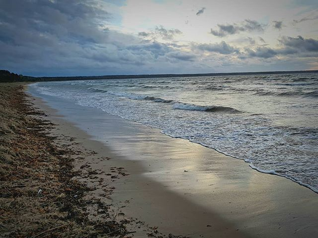 Photo: #loksa #beach. #lahemaa #estonia #balticsea