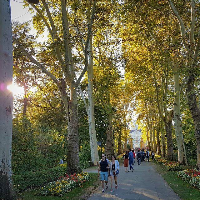Photo: Viel los im #BlüBa heute Nachmittag. #Herbst #sommer #Sonne #lubu #Ludwigsburg #luburulz