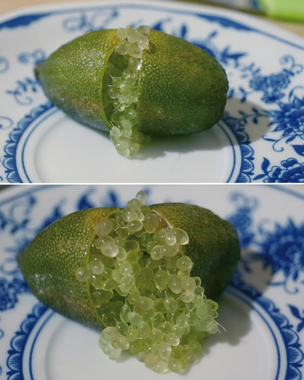 Photo: My first #fingerlime. A visual and haptic spectacle. Taste? Well... #zitonenkaviar #fruit #citrusaustralasica #limecaviar #organic #food